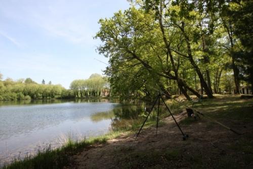 Photo Camping L'etang D'ardy