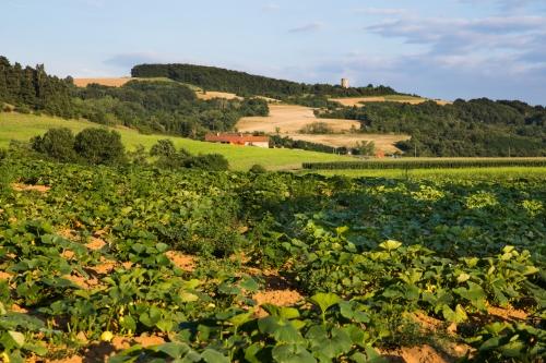 Photo Domaine La Garenne